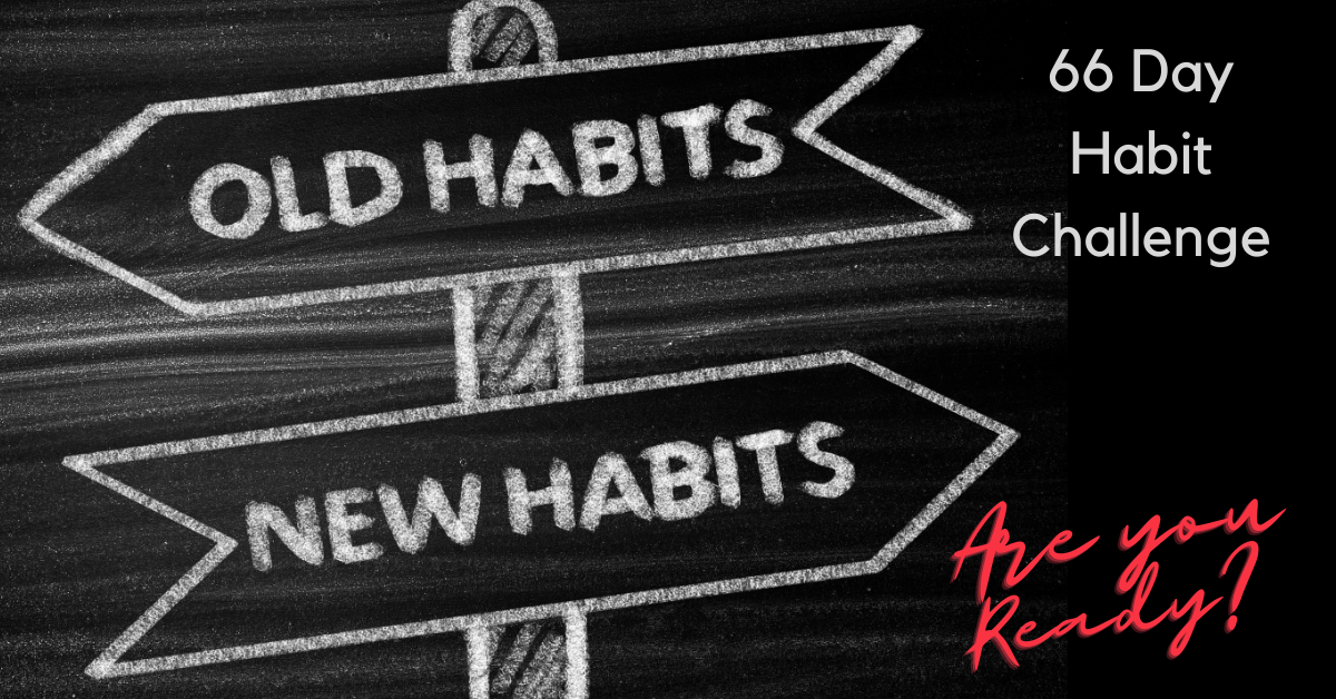 66 Day Habit Challenge